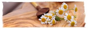Chamomille flower on wooden surface with wooden spoon